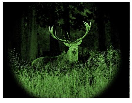 Đèn hồng ngoại để săn động vật hoặc săn ảnh ban đêm